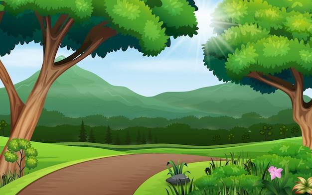 Naturhintergrund mit wegstraße und bäumen
