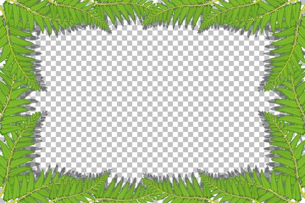 Naturpflanzen gestalten transparenten hintergrund