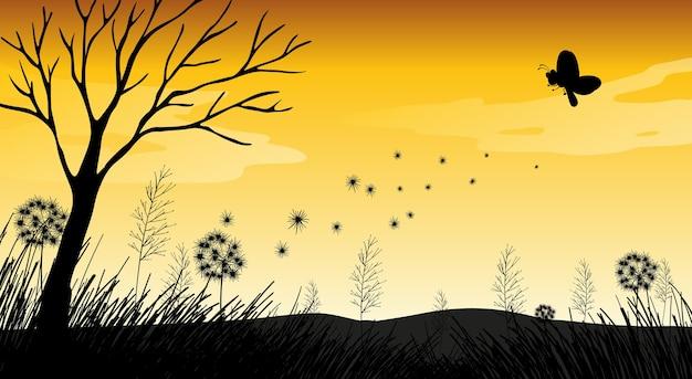 Naturschattenbild-sonnenuntergangsszene im freien