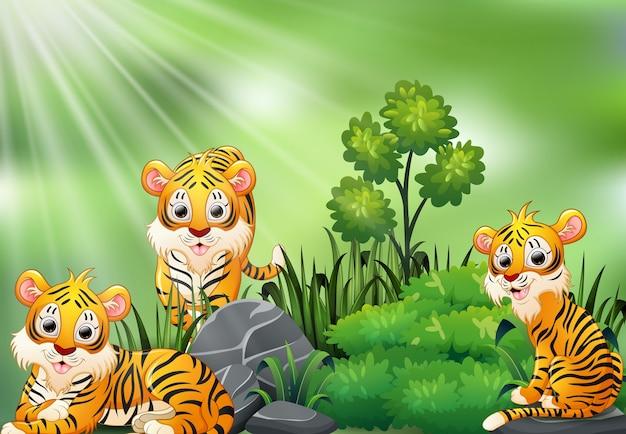 Naturszene mit gruppe der tigerkarikatur