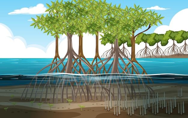 Naturszene mit mangrovenwald im cartoon-stil