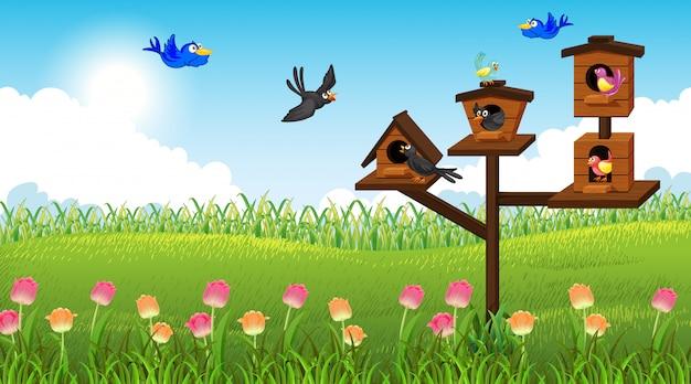 Naturszenenhintergrund mit vögeln in ihrem haus