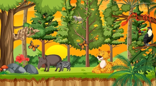 Naturwald bei sonnenuntergang zeitszene mit wilden tieren