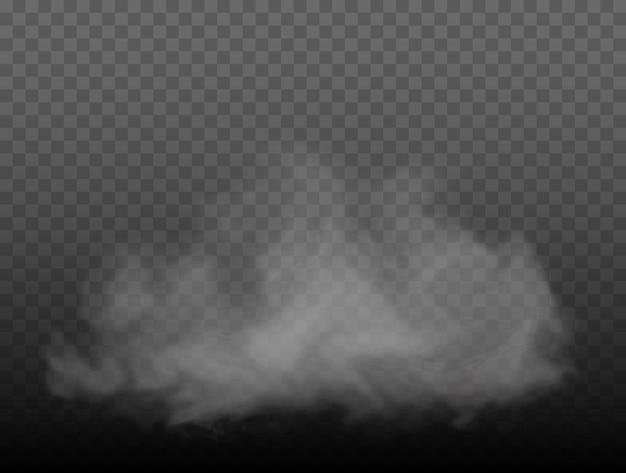 Nebel oder rauch transparenter spezialeffekt weißer vektortrübungsnebel oder smoghintergrund