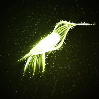 Neon kolibri.