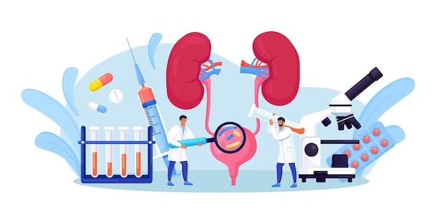 Nephrologie, urologie. harnwegsinfektion, uti medical concept. zwei ärzte untersuchen und behandeln blase und nieren. nierenendoskopie, untersuchung, partielle nephrektomie