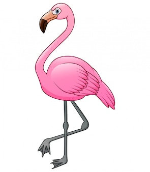 Nett ein flamingo-cartoon