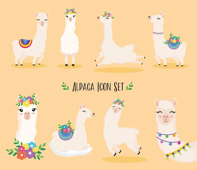 Nette acht exotische tiere der alpakas mit blumenillustrationsentwurf