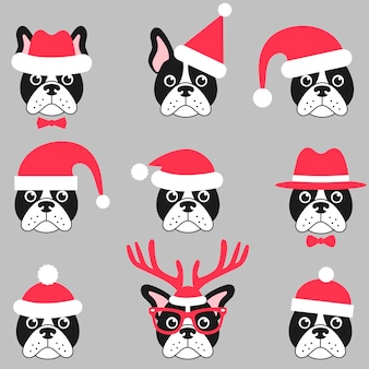 Nette französische bulldoggen mit roten weihnachtsmützen