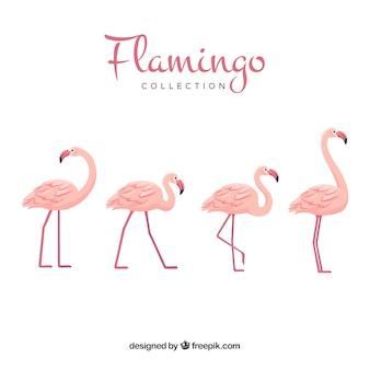 Nette gezeichnete art der flamingosammlung in der hand