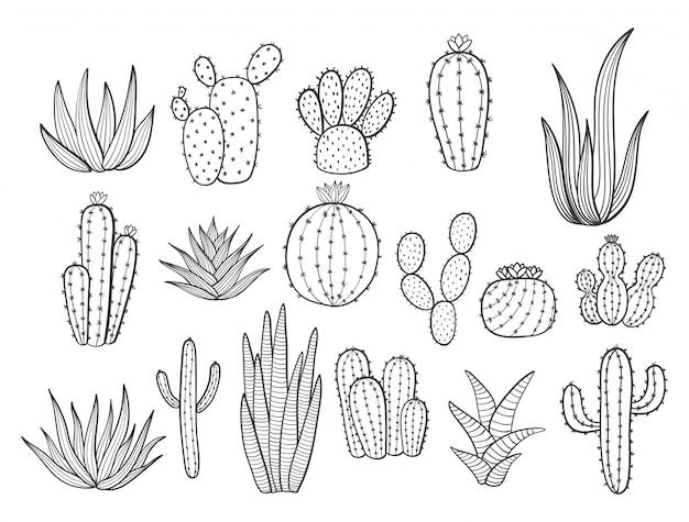 Nette hand gezeichnete kakteen in den töpfen. kaktus, zimmerpflanzen, blumen, sukkulenten in töpfen auf einem weiß
