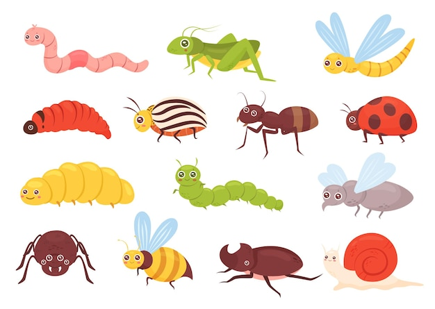 Nette insekten setzen bunte lustige insektengrashüpferlibellenwurmspinnenfliegen-marienkäfer