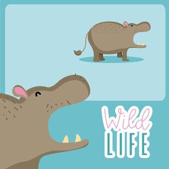 Nette Karikatur des Flusspferdtiertier-Tieres