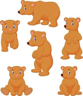 Nette karikaturkollektion des braunen bären