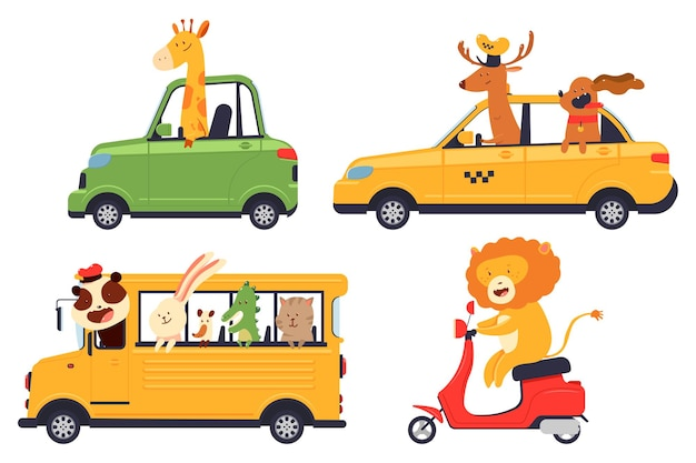 Nette karikaturtierfahrer im auto, im schulbus, im roller und im taxivektorsatz lokalisiert auf einem weißen hintergrund.