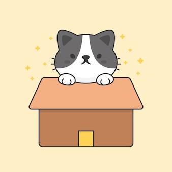 Nette katze in einem papierkasten