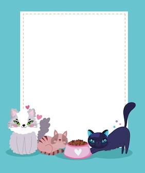 Nette katzen mit futternapf und leerer leerer fahnenvektorillustration
