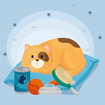 Nette kleine katze im kissen und in den elementen für pflege