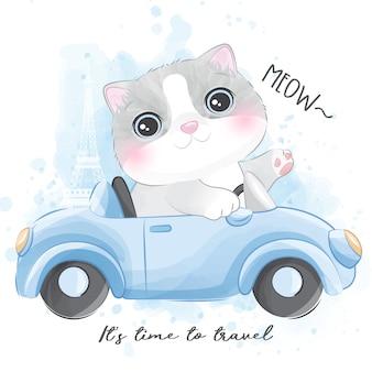 Nette kleine miezekatze, die ein auto reitet