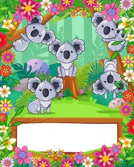 Nette koala mit blumen und hölzernem freiem raum unterzeichnen herein den wald. vektor