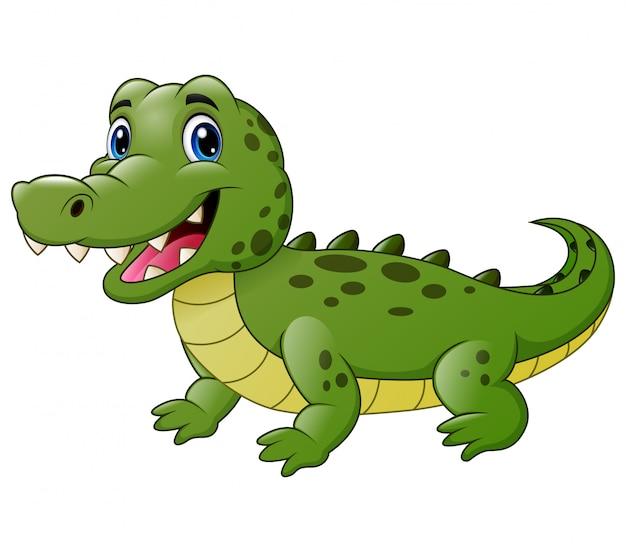 Nette krokodilkarikatur lokalisiert auf weiß