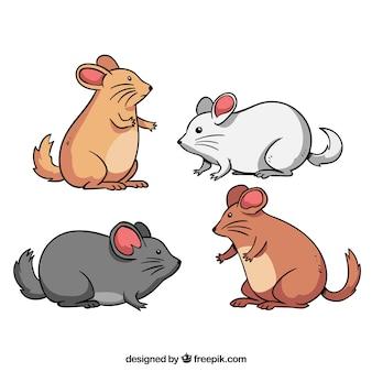 Nette mäuse züchten sammlung