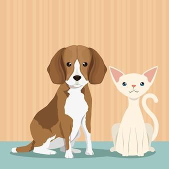 Nette maskottchen des hundes und der katze