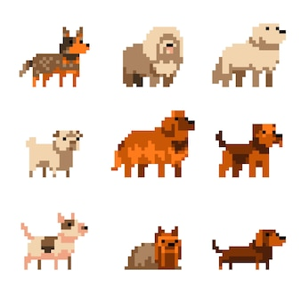Nette pixelkunsthunde setzen illustration isoliert