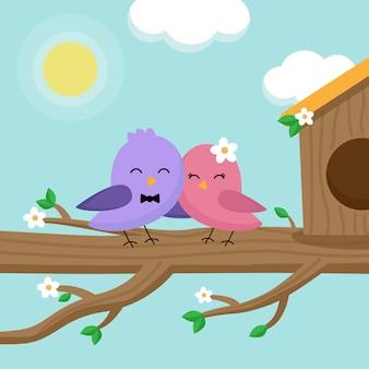 Nette reizende paare vögel, die im frühjahr auf baum stationieren.