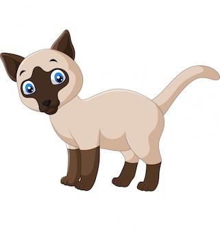 Nette siamesische katze der karikatur auf einem weiß