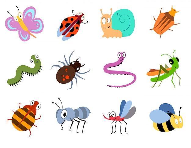 Nette und lustige wanzen, insektenvektorsammlung