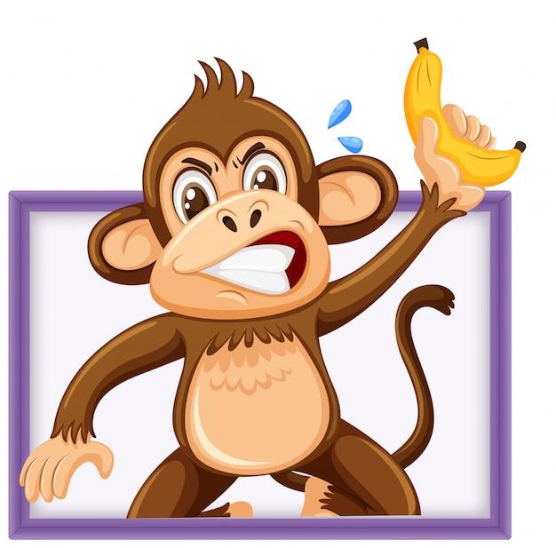 Netter affe, der banane mit lustigem gesicht lokalisiert auf weißem hintergrund hält