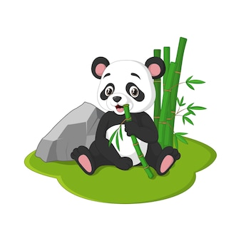 Netter babypanda, der mit dem essen der bambusstämme sitzt