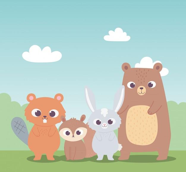 Netter biber eichhörnchenbär und kleine kaninchenkarikaturtiere Premium Vektoren