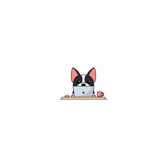 Netter boston-terrierhund, der an einer laptopkarikaturikone arbeitet