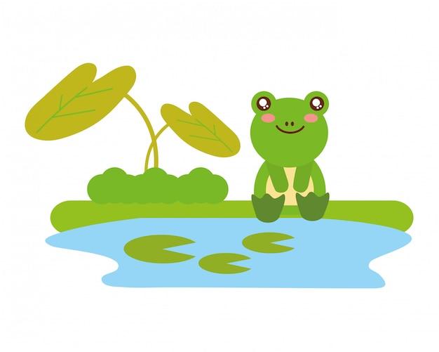 Netter frosch, der im see sitzt