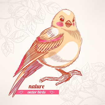 Netter gelber vogel