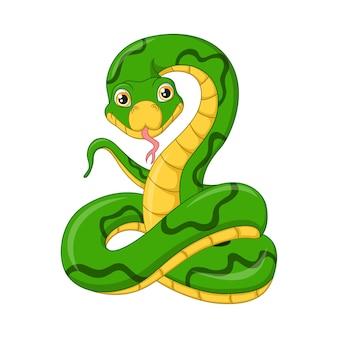 Netter grüner schlangenkarikatur