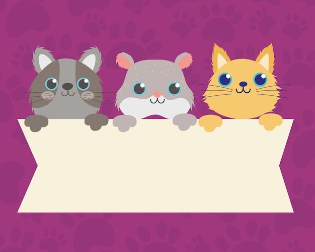 Netter hamster und katzen mit leerer fahnenvektorillustration