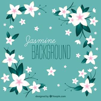 Netter hintergrund mit jasmin blumen