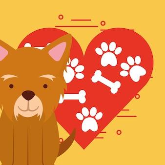 Netter hund, der mit pfote und knochenherz-liebeshundehaustier sitzt