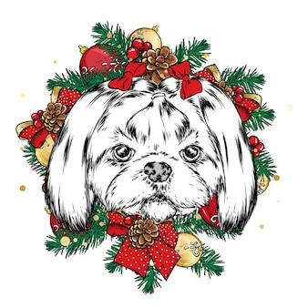 Netter hund in einem weihnachtskranz