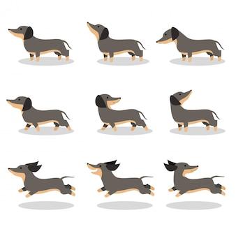 Netter hundedachshundvektor-illustrationssatz
