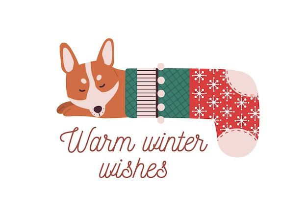 Netter kleiner hund, der im weihnachtsstrumpf schläft.