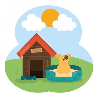 Netter kleiner hund im holzhaushaustiercharakter