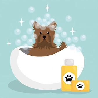 Netter kleiner hund mit badewanne