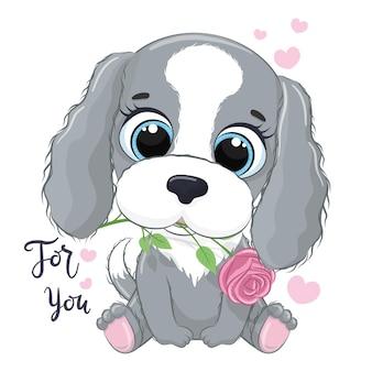 Netter kleiner hund mit blume. alles gute zum valentinstag clipart.