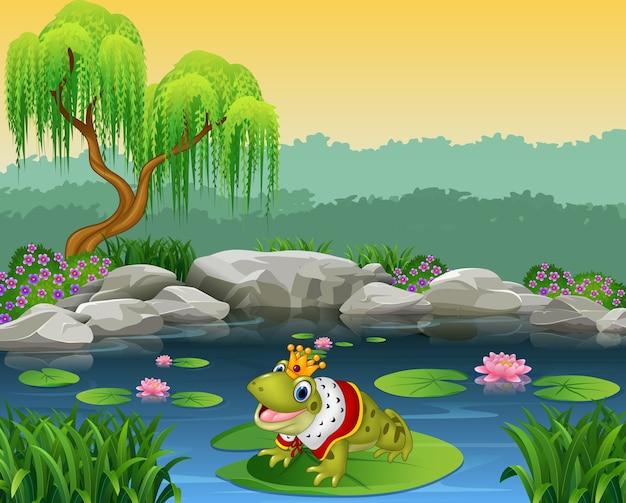 Netter königfrosch, der auf dem lilienwasser sitzt