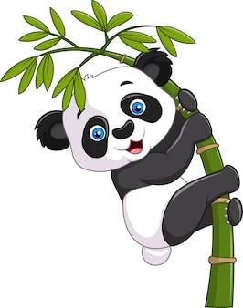 Netter lustiger babypanda, der am bambus hängt