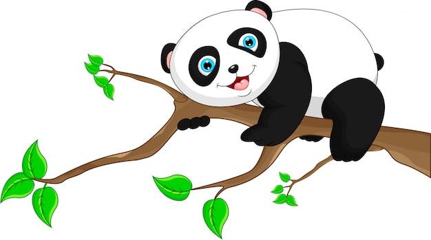 Netter lustiger schätzchenpanda